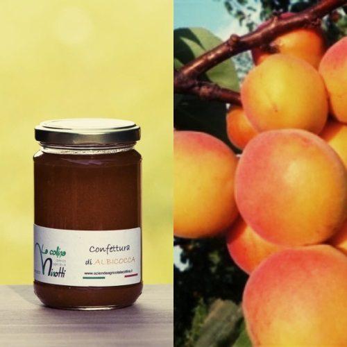 confettura extra di albicocca azienda agricola la collina di francesco minotti